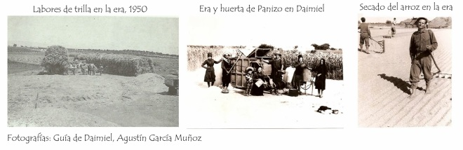 Imágenes de eras de Daimiel - foto extraída del blog: http://arquitecturapopularmanchega.blogspot.com.es