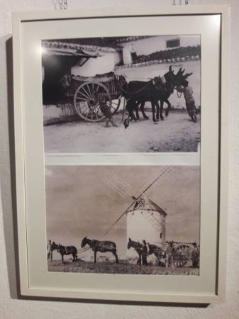 exposicion etnografica de Jesus Gomez-Calcerrada10